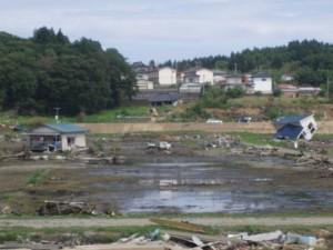 陸前高田の水田2